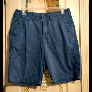 American Eagle Outfitters Longboard shorts. (32)